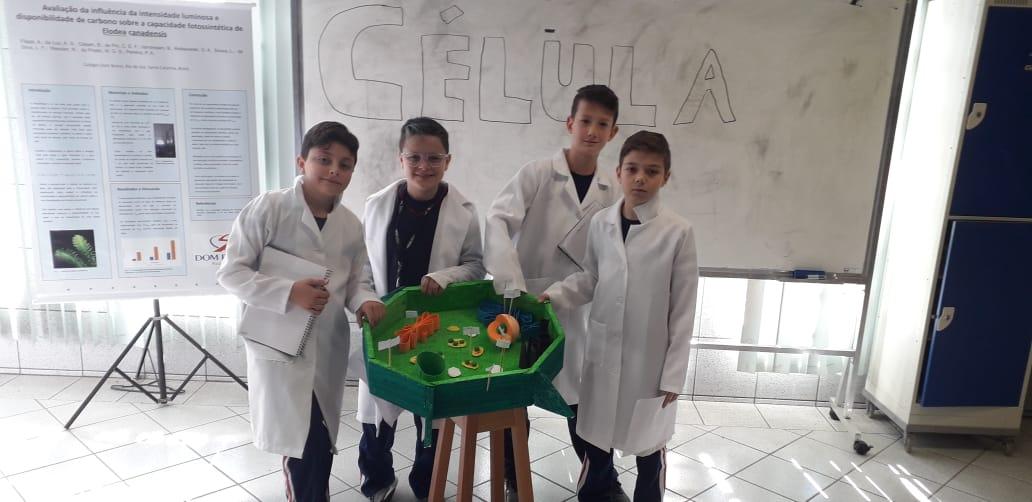Dia Nacional da Ciência